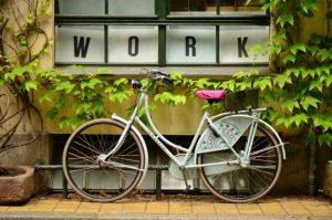bike-bicycle-plants-pots-leaves-work-window